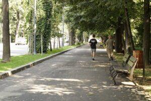 Read more about the article Va jouer dans le traffic à Bucarest