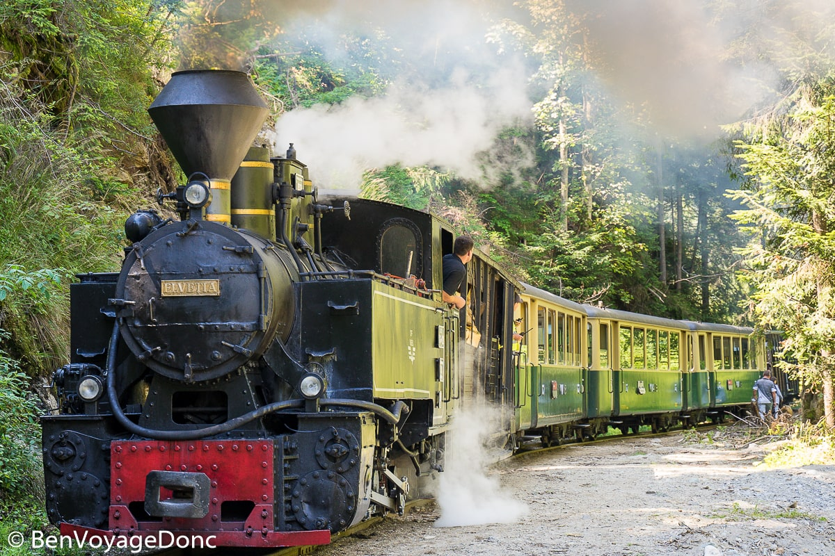 Read more about the article Mocănița Steam Train