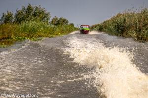 Read more about the article Ramifications dans le Delta du Danube